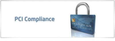 What are the PCI fees on my merchant account statement?