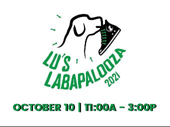 Lu's Labs Labapalooza 2021