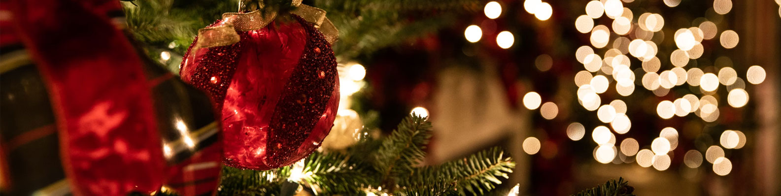 Organize Christmas Decorations Workshops