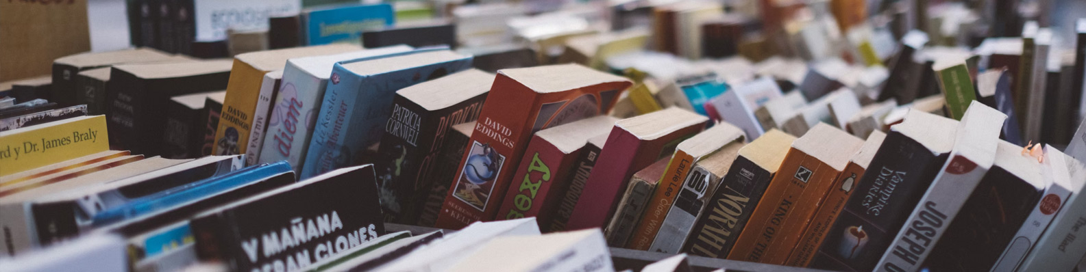 Library Book Sale and Community Events